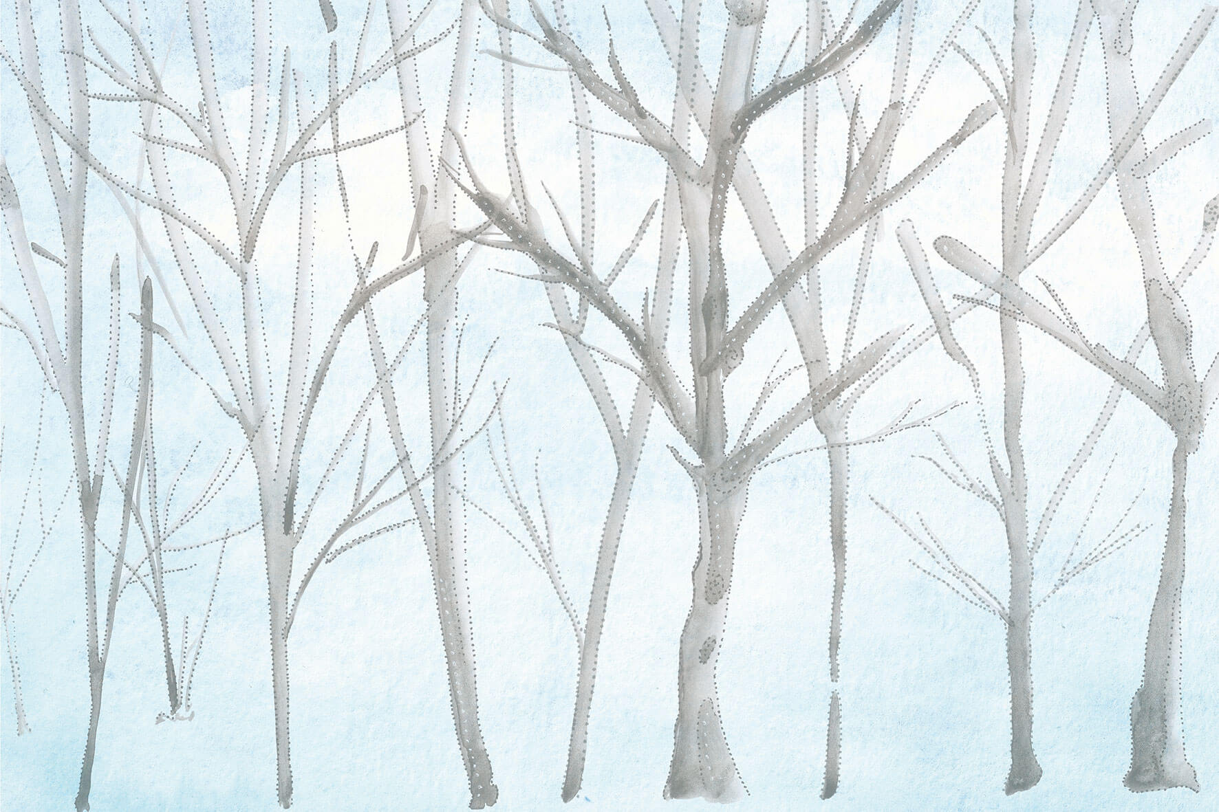 Tapet Colibri | GLAMORA