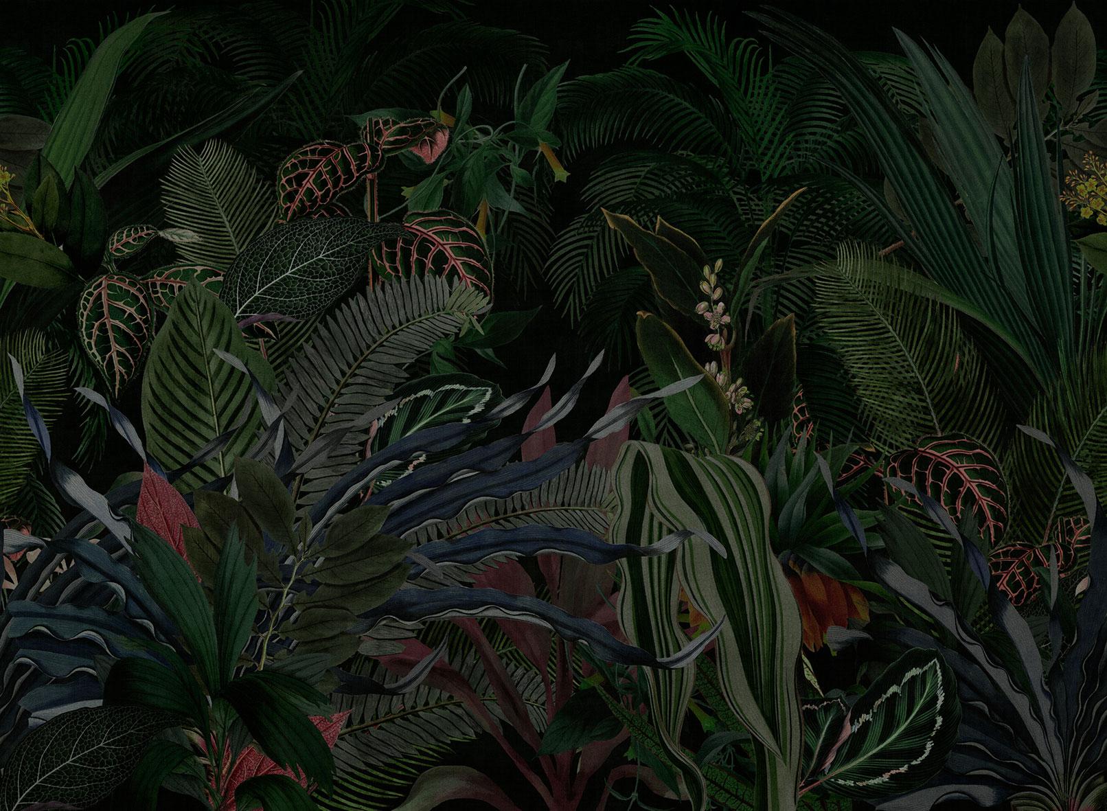 Tapet Lost paradise | LONDON ART